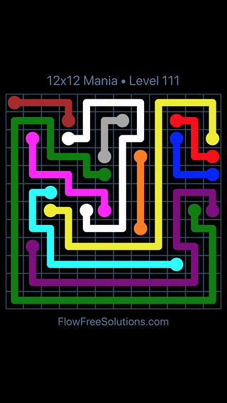 Solution and Answer to the Puzzle for Flow Free 12x12 Mania Level 111