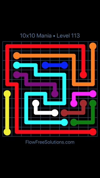 Solution and Answer to the Puzzle for Flow Free 10x10 Mania Level 113