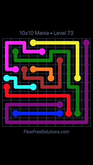 Solution and Answer to the Puzzle for Flow Free 10x10 Mania Level 73